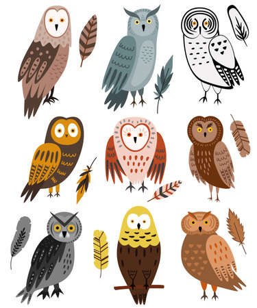 Set of 9 cute owls and 9 feathers. Vector Illustration isolated on white. Night birds - owl, eagle owl, barn owl. Brown, gray, yellow colors. Cartoon flat design. Cute characters.