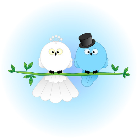 Stylish Bride and Groom Birds  Cartoon characters for wedding invitations, cards, etc
