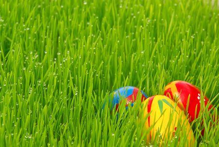 Easter egg photo