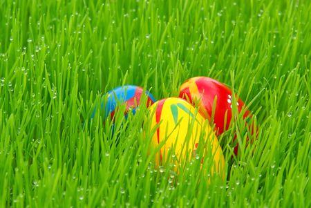 Easter egg Stock Photo - 2722118