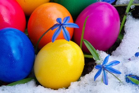 easter eggs in snow photo