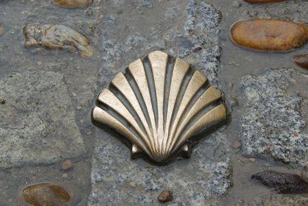 camino: St James shell