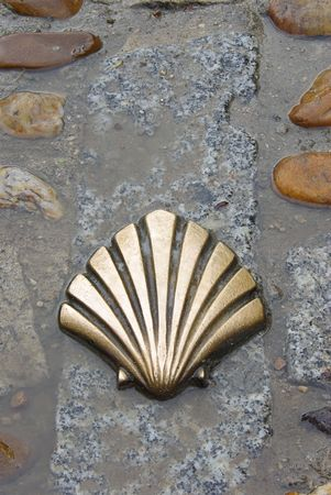 St James shell 03 Stock Photo - 3106135