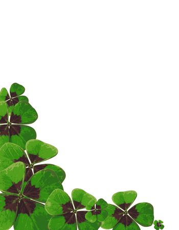 four leafed clover Stock Photo - 3186831