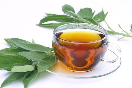 01: Tee Salbei - tea sage 01 Stock Photo