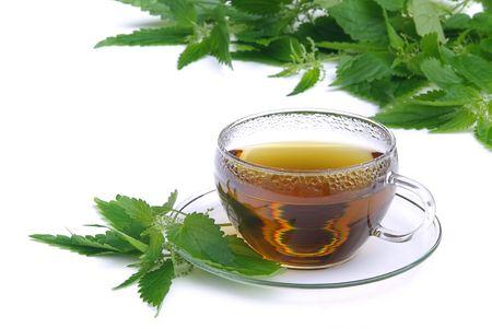 tea nettle 01 photo