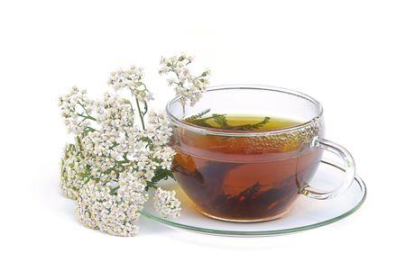 tea yarrow 01 photo