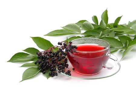 tea elder 01 photo