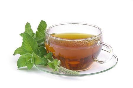 mentha: tea Mentha citrata 01 Stock Photo