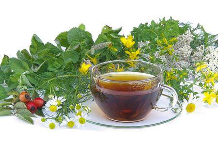 tea herbal 01 Stock Photo - 3615311