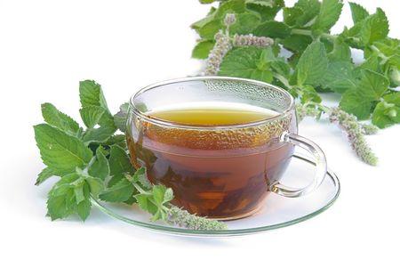 mentha: tea Mentha citrata 03 Stock Photo