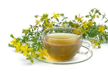 tea St Johns wort 03 Stock Photo - 3625132