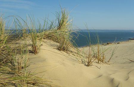 du ร    ก ร: Dune du Pyla 02
