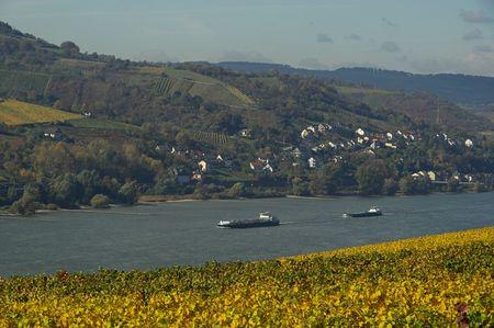 Rhein 05