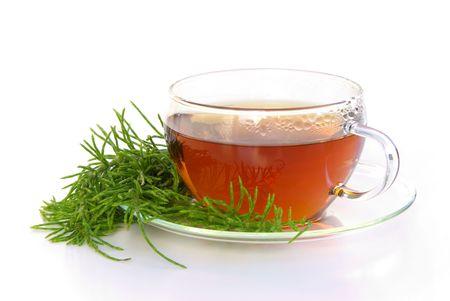 tea field horsetail 01
