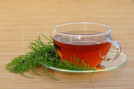 tea field horsetail 03 Stock Photo - 4801746