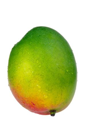 isoliert: Mango 01 Stock Photo