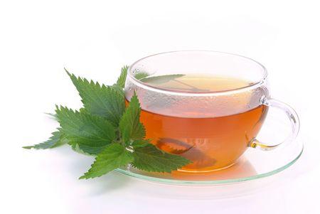 tea nettle 03 photo