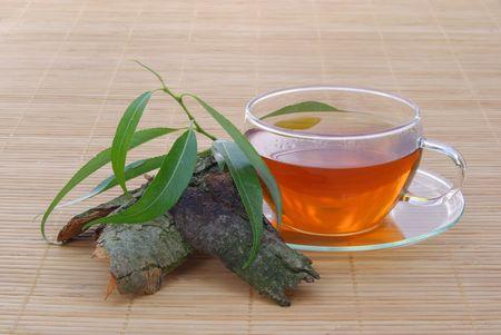 tea willow 01 photo