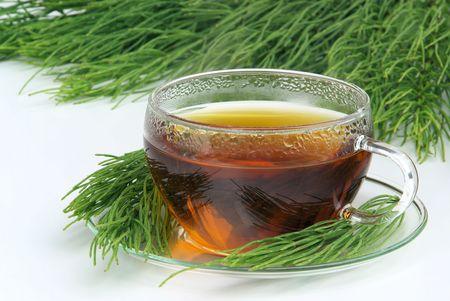 field, horsetail tea