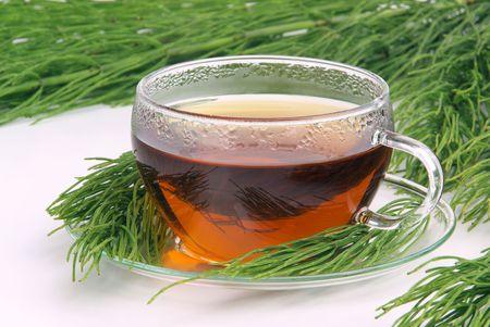 tea field horsetail Stock Photo - 5328727