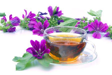 tea malva  Stock Photo