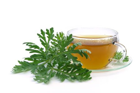 tea wormwood photo