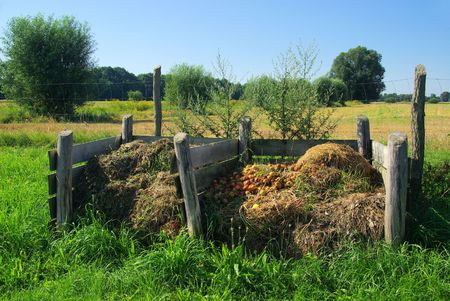 garbage pile: compost pile 07