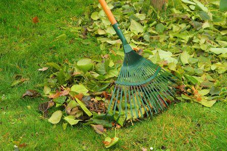 leaves rake 09 Stock Photo - 5974343