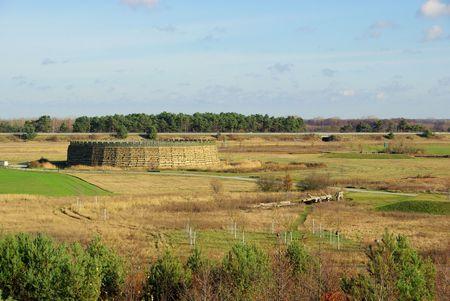 slavic: Raddusch Slavic Fort