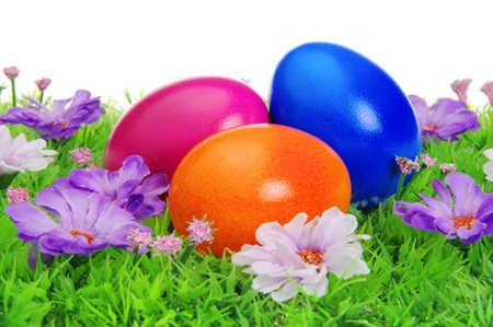 easter eggs on flower meadow photo