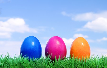easter eggs on flower meadow and sky 01 photo