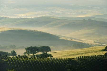 farmlands: tuscany