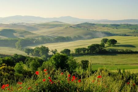 Tuscany hills 19 Stock Photo - 7471552