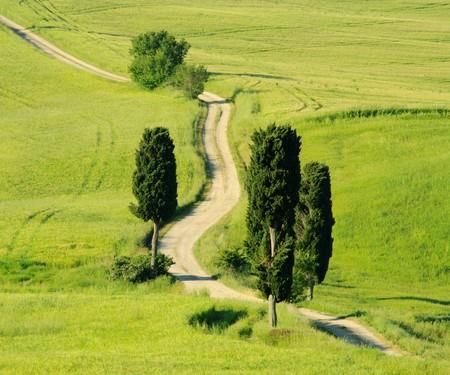 terrapille: tuscany