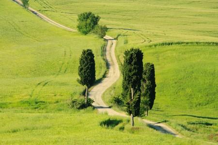 Tuscany hills Stock Photo - 7471613