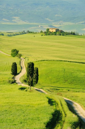 Tuscany hills  Stock Photo - 7471638