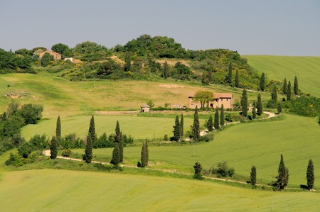 tuscany Stock Photo - 11103349