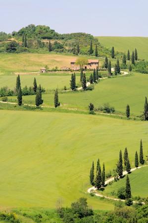 podere: tuscany