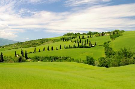 farmlands: cypress curve