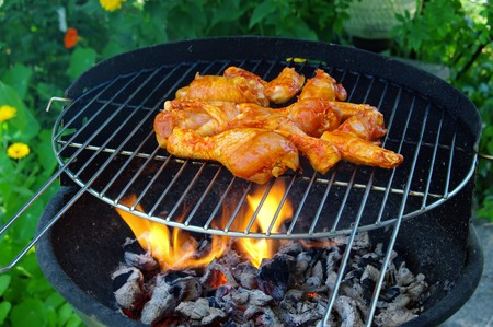 grilling chicken  Stock Photo - 7562161