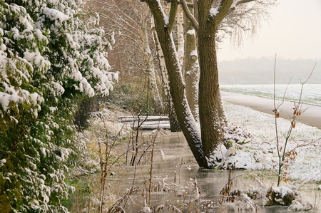 feld: winter