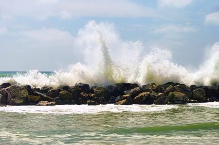 breakwater: Rompeolas de playa de Pisa