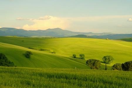 Tuscany hills Stock Photo - 9121468