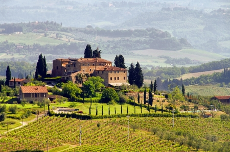 Tuscany vineyard Stock Photo - 9121734