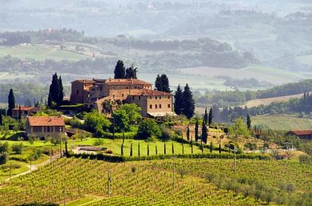 vi�edo: Vi�edo de Tuscany