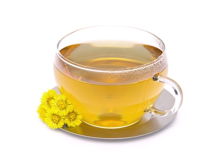 tea Coltsfoot Stock Photo - 9818136