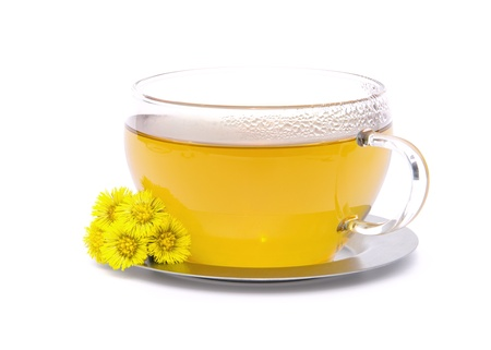 tea Coltsfoot 02 Stock Photo - 9323157