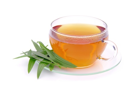 tea ribwort plantain Stock Photo - 11096386