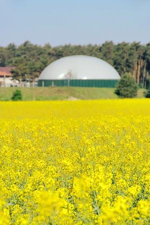 biomasa: campo de violaci�n de planta de biog�s Foto de archivo